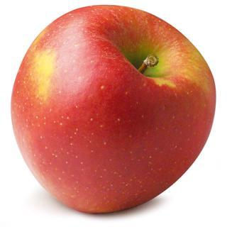 Äpfel Jonagold I süß