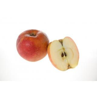 Äpfel Boskoop säuerlich,