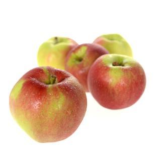 Äpfel Santana süß-sauer,