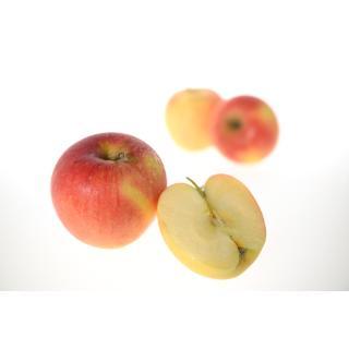 Äpfel  Pinova I süß, knackig frisch