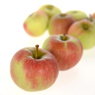 Äpfel Elstar süß I,