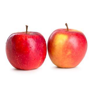 Äpfel Piros, saftig süss saurer Frühapfel