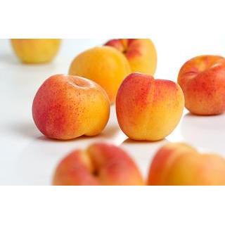Aprikosen,die ersten