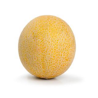 Mini Galia Melone ca.300- 350g