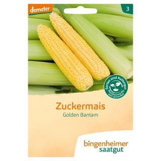 -Saatgut-  Zuckermais Golden Bantam