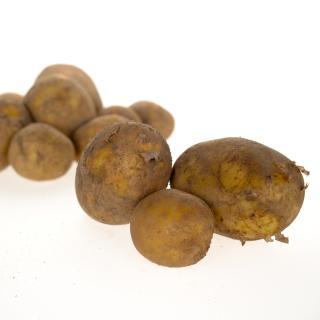 Kartoffel Tüte der Saison 2,5kg